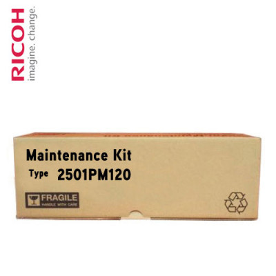 2501PM120 Ricoh Ремонтный комплект